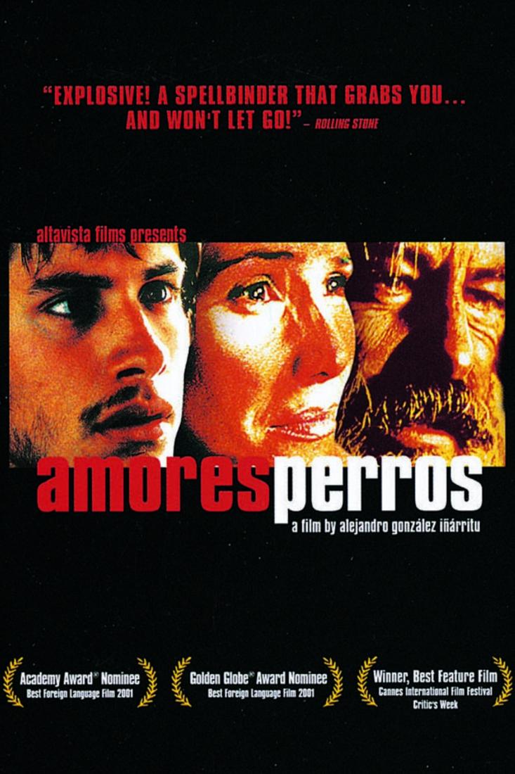 постер Сука любов / Amores perros (2000)
